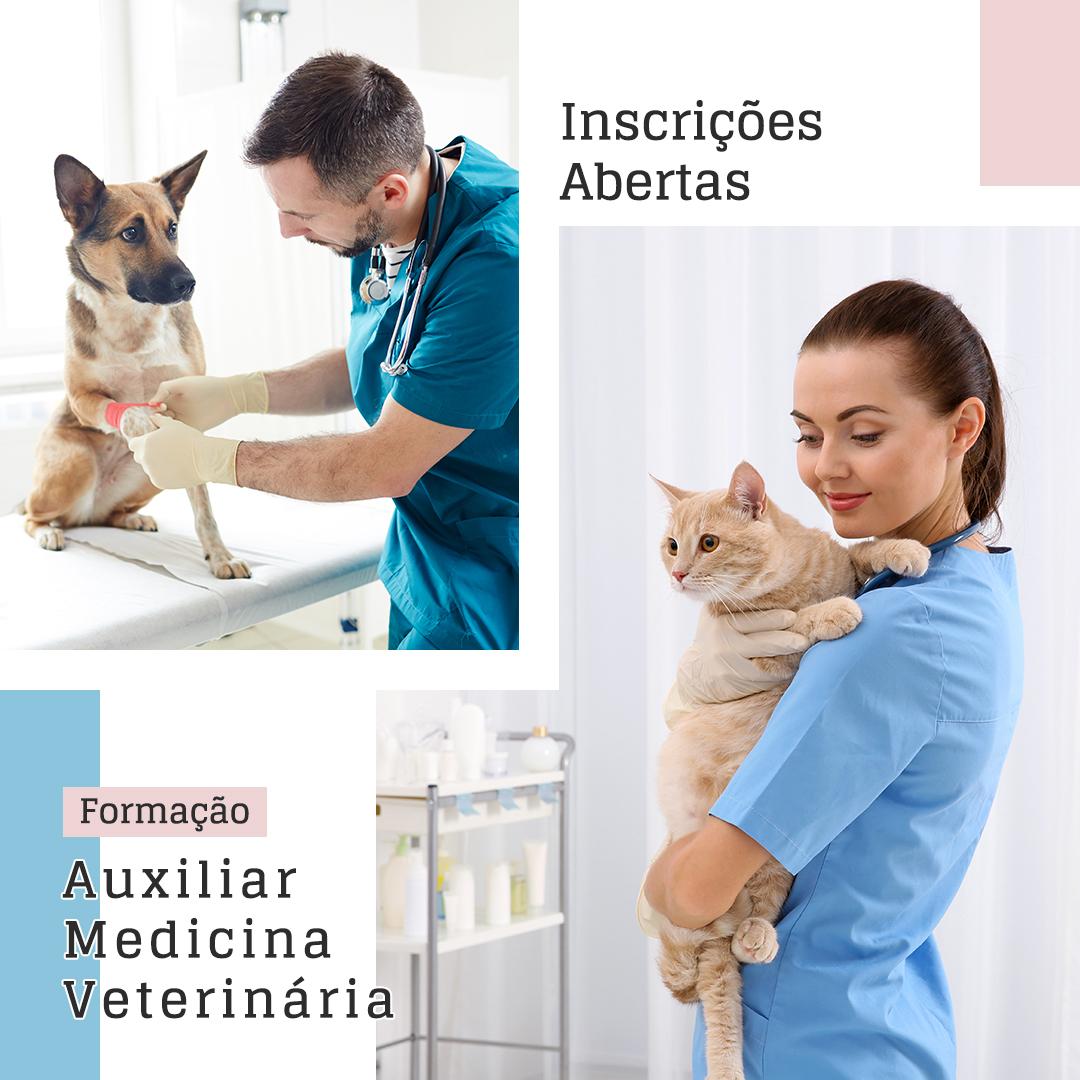 Formação Auxiliar Medicina Veterinária